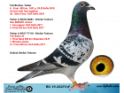 BG19-22273 ERKEK / ORJ DIMITAR TODOROV KARDESI 6. FINAL 420 KM OLR SOFIA 2019
