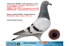 CHN20-0866920 - KOOPMAN - GABY - JANSSEN - V. LOON