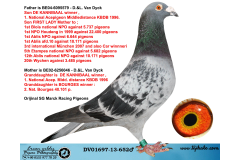 DV01697-13-652 ERKEK / D. & L. VAN DYCK % 100  DE KANNIBAAL TORUNU