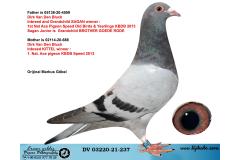 DV03220-21-237 / INBREED KITTEL & SAGAN !!!
