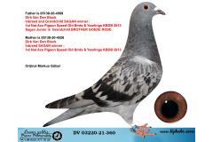 DV03220-21-360 / INBREED SAGAN & KITTEL !!!