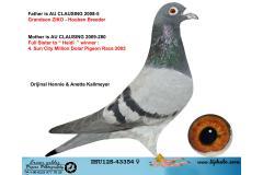 IHU 12S-43354 DİŞİ / ORİJİNAL HENNIE & ANETTE KALLMEYER