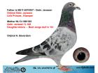 NL15-1347674 ERKEK / GEBR. JANSSEN % 100