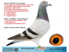 TR-18-207425 DİŞİ / BABASI 10. FİNAL OLR KIRKPINAR - ANNESİ 1. FİNAL OLR KALİMANCİ