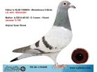 TR-20-176809 YAVRU / SCHREUDER - JANSSEN