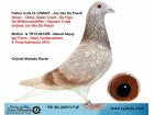 TR-20-220717 ERKEK / BABASI JAN VAN DE PASCH ANNESİ 4. FİNAL KALİMANCİ