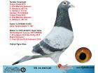 TR14-040120 ERKEK / KENDİSİ 3. ORTA MARATON KLASMAN