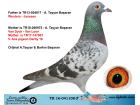 TR16-041108 ERKEK / WOUTERS - VAN DYCK - VAN LOON