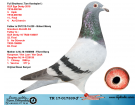 TR17-017339 ERKEK KARDEŞLERİ EGE DERBY UŞAK 3. VE FİNAL11.