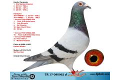 TR17-080062 ERKEK /  1. ORTA MARATON - YARVUSU 1. FİNAL OLR AYDIN ARENA