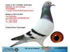 TR18-071004 ERKEK / ORJ ERDEM TÜSÜZOĞLU ANNESİ LEO HEREMANS