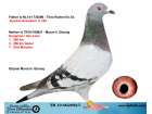 TR19-002592 DİŞİ / BABA JANSSEN ANNESİ KOOPMAN - VAN LOON