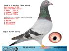 TR19-005949 - BABASI JAN HOOYMANS ANNESİ KOOPMAN - VAN LOON
