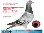 TR20-020543 DİŞİ / ANNESİ ADEM 168 - BABASI R. WALTER - K BOSUA