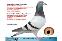 TR20-052935 ERKEK / BABA DE RAUW ŞABLON - HARDY KRUGER ANNE INBRED SİLVİA*CİNGÖZ