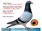 TR20-059206 ERKEK / KENDİSİ 4. İZMİT 505 GÜV. TRAKYA POSTA 2021