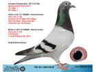 TR20-108100 ERKEK / VAN LOON % 100