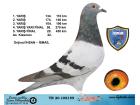 TR20-108159 / İHSAN - İSMAİL FİNAL 430KM 20 AS KLASMAN 22.