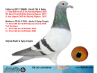TR20-152023 ERKEK / BABASI 3. FİNAL 550 KM ANNESİ 17. FİNAL 500 KM KIRKPINAR