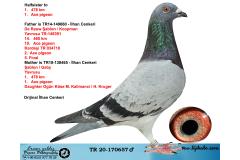 TR20-170657 ERKEK / DE RAUW ŞABLON - KOOPMAN - GABY ANNEDEN KARDES 1. 478 KM