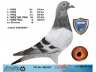 TR20-180225 EGEDEBY FİNAL 430 KM 6. AS KLASMAN 19.