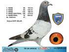 TR20-255832 / AKİF GÜLER FİNAL 430 KM 18. AS KLASMAN 27.