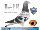 TR20-258872 / K. DEMİR – C. YELMAN FİNAL 430 17. AS KLASMAN 26