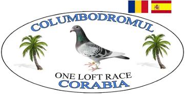 CORABIA ONE LOFT RACE