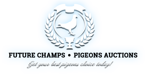 FUTURE CHAMPS-PIGEON AUCTIONS / MARIAN PASKOV