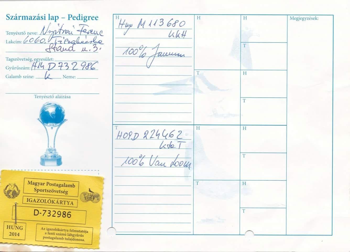 CHN20-0866917 - A. DIJSTRA  - GABY VANDENABEELE - JANSSEN - VAN LOON