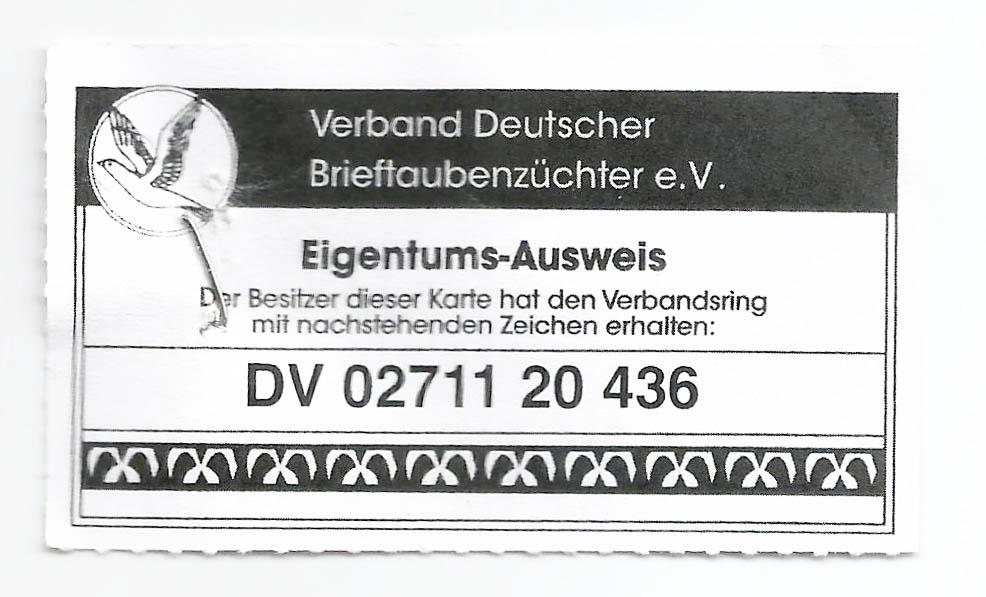 DV02711-20-436 ERKEK /  INBREED HURRICAN 51  -  2 ORJ RAINER PUTTMANN YAVRUSU