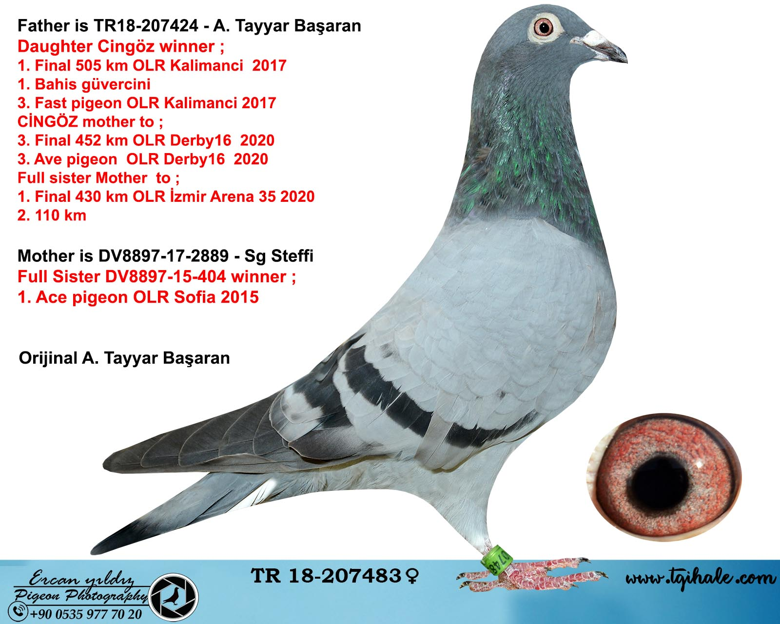 TR18-207483 DİŞİ BABASI CİNGÖZ OĞLU ANNESİ SOFİA AS 1 KIZ KARDEŞİ