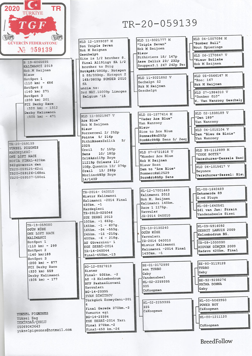 TR20-059139 ERKEK/ KARDESI 62. KALIMANCI ANNESI MISTER KALIMANCI KIZI